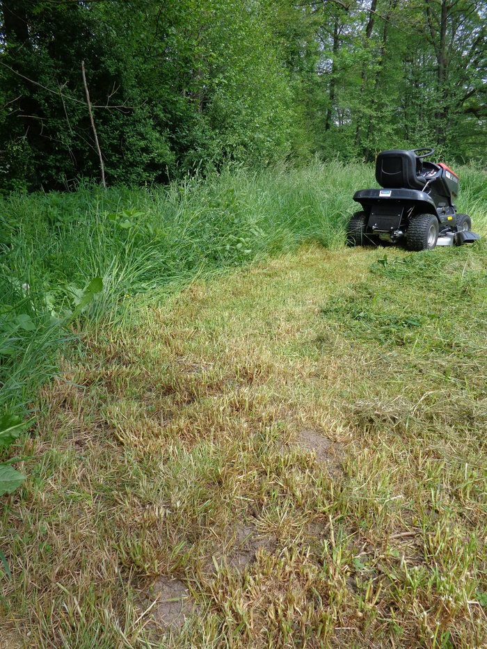 Hohes Gras - hohe Effizienz - Super Schnitt - Wiesen optimal Mulchen