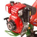 Yanmar Dieselmotor