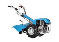 Einachsschlepper: Bertolini - 411 (Dieselmotor, Grundgerät ohne Bereifung und Anbaugerät)