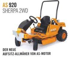 Gartentraktoren: Tielbürger - Tielbürger ta1020 Geräteträger