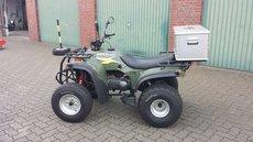 Gebrauchte ATVs: ADLY Moto - ATV 150 Utility Grün (gebraucht)