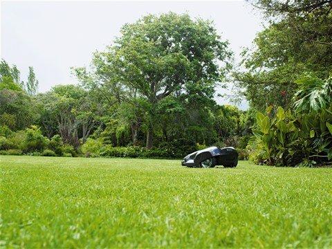 Optimales Mähergebnis Dank des freien Bewegungsmusters wird der Rasen optimal geschnitten und erreicht dabei eine wunderschöne und Teppich ähnliche Struktur. Die messerscharfen Klingen schneiden das Gras von allen Richtungen, wobei das Schnittgut als natürlicher Dünger auf dem Rasen verbleibt und somit ein gutes Wachstum fördert
