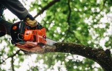 Angebote Top-Handle-Sägen: Echo - Echo Profi Baumpflegesäge CS-362TES NEU ((( EINE KLASSE FÜR SICH ))) (Aktionsangebot!)