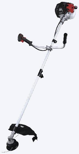 Freischneider:                     Scheppach - Freischneider BCH3300-100PB