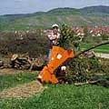 speziell gehärtete Messerklingen scheiden und schnitzeln alle Gartenabfälle und Holz in Fasen zu wohlstrukturiertem Häckselgut. Gleichzeitig zerkleinert ein Schnitzelwerk Äste mit bis zu 5 cm Durchmesser.