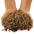 Das Häckselgut wird beim GHX-CH1000 in kleine Holzschnitzel geschnitten.  Es verrottet in kürzester Zeit zu wertvollem Humus.  Das Häckselgut kann direkt unter Sträucher und Hecken als Mulchschicht ausgebracht werden.