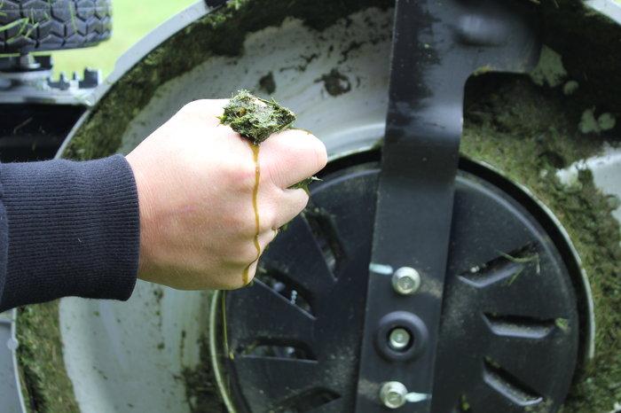 Eine separate Lüfterscheibe mit Luftschaufeln erzeugt einen so starken Luftstrom, dass selbst feuchtes Gras aufgerichtet und perfekt geschnitten wird.