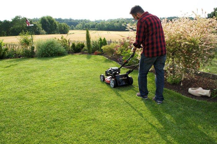 Rasenmäher mit Fangkorb, Heckauswurf oder Mulchen