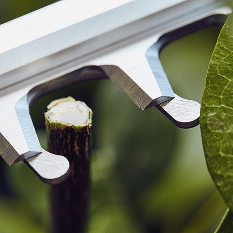 Innovatives Schersystem  Überstehende Tropfen halten den Ast während des Schnitts am Messer. Die Schnittleistung wird so deutlich gesteigert.