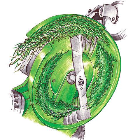 Seitenauswurf  Beim Mähen mit geöffneter Auswurfklappe wird das gschnittene Gras einfach seitlich ausgeworfen.