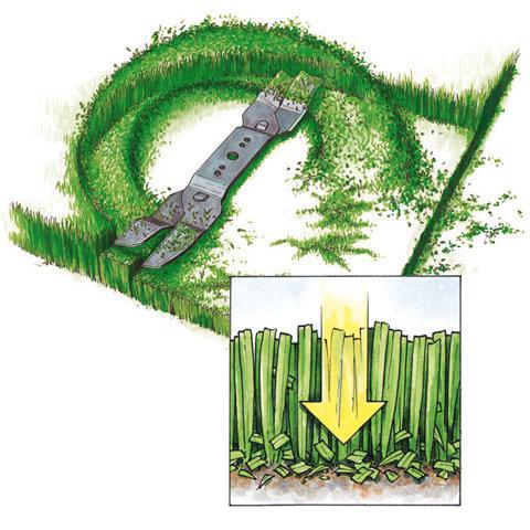 Mulchfunktion  Wird der Grasfangkorb abgenommen und der Mulchkeil eingesetzt arbeitet der Mäher im Mulchbetrieb. Dabei wird der Grasschnitt fein zerkleinert und gleichmäßig auf der Rasenfläche verteilt - eine Entsorgung entfällt. Das spart Zeit und gleichzeitig werden dem Rasen Feuchtigkeit und die entzogenen Nährstoffe wieder zugeführt.