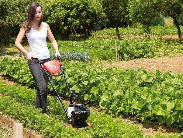Ideal für Gemüsebeete