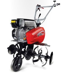 Motorhacken: 								Eurosystems - Z 8 Labour (Briggs & Stratton)