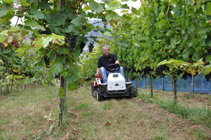 Ideal auch im Weinbau