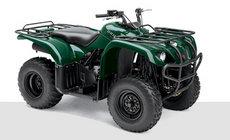 ATVs: Yamaha - YFM450 FWAN Kodiak rot