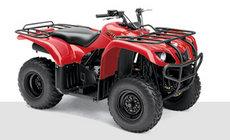 ATVs: Yamaha - YFM250 AN Bruin rot