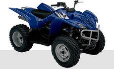 Quads: Yamaha - YFM 125 Grizzly grün