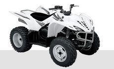 Quads: Yamaha - YFM450FX Wolverine 4WD weiß