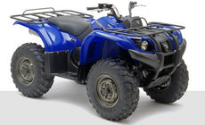 ATVs: Yamaha - YFM660 FWA Grizzly rot