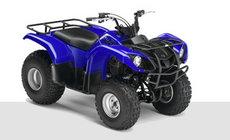 Quads: Yamaha - YFM 125 Grizzly blau