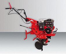 Motorhacken:                     Eurosystems - Z 8 (Briggs & Stratton)