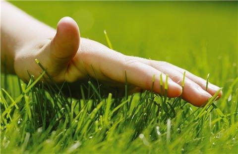 """Barfuß über sattgrünen, dichten und gesunden Rasenteppich gehen? Das entspannt. Wir als Mähroboter-Pioniere haben langjährige Mäherfahrung und unsere Mähroboter überzeugende technische Eigenschaften. Sie mähen mit dem SensorCut System regelmäßig, schnittig und mit """"Gefühl""""."""